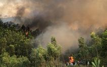 Nắng nóng gay gắt, liên tiếp cháy rừng ở miền núi phía Bắc