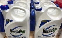 'Bản án lịch sử' và hàng ngàn đơn kiện chờ Monsanto