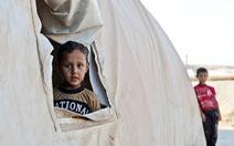 Thùng thuốc nổ Idlib