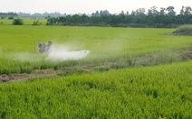 Nông nghiệp 'nghiện' thuốc và hóa chất