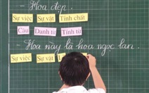 Cựu học sinh học tiếng Việt theo công nghệ giáo dục nói gì?