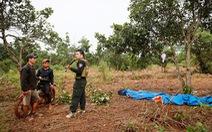 Kiến nghị xử lý hình sự dự án của Công ty Long Sơn tại Đắk Nông