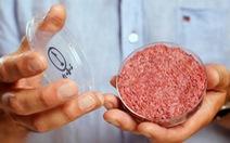 Thịt nhân tạo sẽ 'cứu' môi trường trái đất?