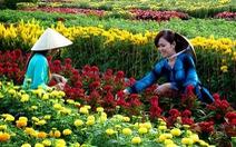 Làng hoa Sa Đéc đón Tết Mậu Tuất