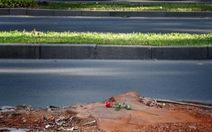 Một cành hồng tri ân hàng cây cho Sài Gòn bóng mát