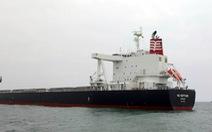 Tàu nước ngoài cứu 11 ngư dân Việt Nam
