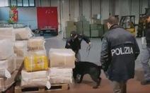 Ý bắt băng mafia Trung Quốc kiểm soát hàng nhập vào châu Âu