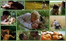Top những cảnh quay tình cảm khó quên trên... cỏ!