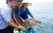 Vận động người dân giao 4 rùa biển thả về đại dương