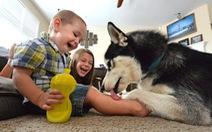 Có thật nuôi chó giúp kéo dài tuổi thọ con người?