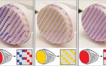 Công nghệ in 3D có thể đổi màu vỏ điện thoại và trang sức