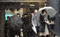 Tuyết dày đặc, nhiều trường học Nhật hoãn kỳ thi đầu vào