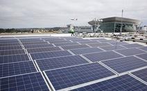 Thủ tướng muốn làm rõ thông tin 30% giá năng lượng tái tạo do thủ tục