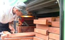 Hai xe giường nằm giấu hơn 10m3 gỗ trong khoang hành lý