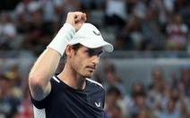 Bị loại ngay vòng 1 Giải Úc mở rộng 2019, Murray có thể sẽ giải nghệ