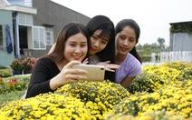 Nhà vườn Sa Đéc đầu tư tiền tỉ cho làng hoa dịp tết