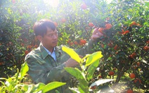 6 năm hái quả ngọt ở Nà Sản