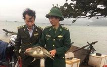 Thả rùa biển có tên trong sách đỏ về tự nhiên