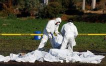 Ít nhất 71 người chết vì nổ đường ống dẫn dầu ở Mexico