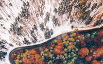 Ngắm rừng cây hai mùa đan xen đẹp nao lòng