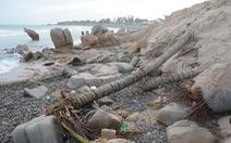 Nghiên cứu hồ sơ sai phạm, chuyển cơ quan điều tra vụ san ủi bãi đá 7 màu