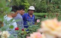 Thăng trầm làng hoa Sa Đéc - Kỳ 3: Chuyện về vườn hồng Tư Tôn