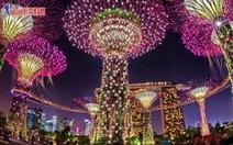 Giảm 1 triệu đồng chùm tour Singapore và liên tuyến Singapore – Malaysia – Indonesia