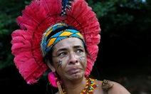 Vụ vỡ đập tại Brazil: Xác người bắt đầu nổi lên mặt bùn