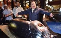 Con cá ngừ gần 300kg giá hơn 3 triệu đôla