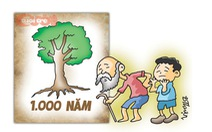 Vì lợi ích nghìn năm trồng cây