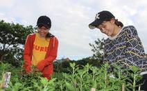 Sinh viên làm nông, buôn bán, kiếm chục triệu đồng giáp Tết