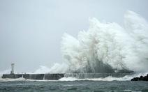 Video siêu bão Hagibis tàn phá Nhật Bản
