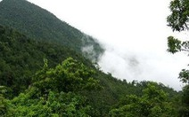 Dự án Tam Đảo 2: Báo cáo đánh giá tác động môi trường được thẩm định chặt chẽ