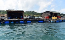 Sống trên lồng bè nuôi cá cũng được công nhận có nhà ở?