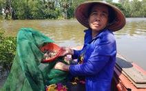 Lũ về trễ lại rút nhanh, giá cá linh còn khoảng 50.000 đồng/kg