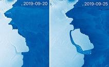 Cuộc phiêu lưu của tảng băng 315 tỉ tấn