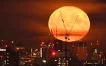 Cựu thống đốc Ngân hàng trung ương Anh: Tài chính thế giới dễ sụp đổ lần nữa