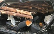 Thoát chết hi hữu khi hàng chục cây gỗ đâm xuyên ôtô