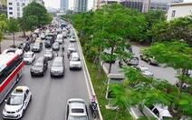 Hà Nội 'xin' trồng thêm 600.000 cây xanh không qua đấu thầu
