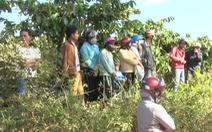 Video: Hỗn chiến trong vườn cà phê, 3 cha con bị chém thương vong
