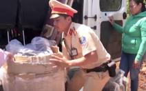 Video: Bắt quả tang một phụ nữ vận chuyển 8 cá thể khỉ