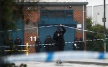Bắt nghi phạm nắm đường đi của container chứa 39 thi thể