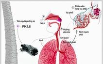 Tác hại khôn lường từ ô nhiễm không khí đến sức khỏe