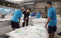 800.000 tấn đường lậu về Việt Nam một năm, cây mía Việt 'chết đứng'