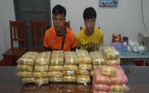 Biên phòng bắt vụ vận chuyển 215.000 viên ma túy ở biên giới Việt - Lào