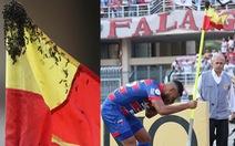 Cầu thủ được khen là 'người hùng' vì… tay không đuổi đàn ong dữ giữa trận đấu