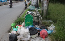 Trong khi chờ xe buýt thì tạm... ngửi mùi rác