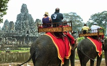 Campuchia cấm du khách cưỡi voi ở Angkor
