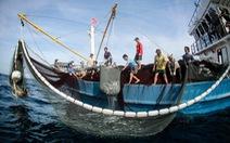 Việt Nam cần quyết liệt chống khai thác thủy sản trái phép để gỡ 'thẻ vàng'