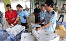 Thêm lô hàng nhập từ Trung Quốc ghi nhãn 'Made in Vietnam'
